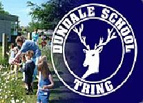 Dundale School Summer Fete